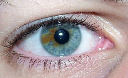 browneyesblue